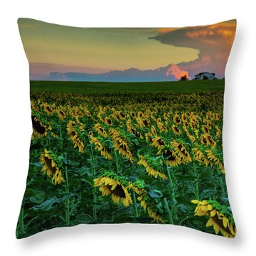 And Then Things Went Nuclear Throw Pillow