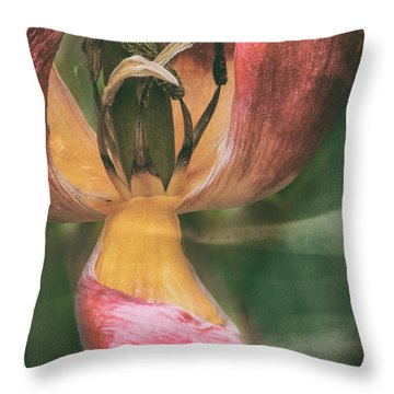 And You Are Who Throw Pillow