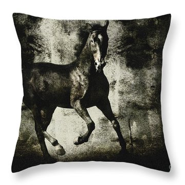 Andalusian Horse Throw Pillow