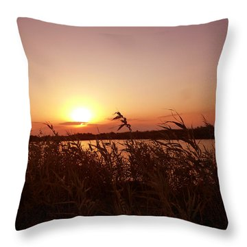Andalusian Landscape Throw Pillow