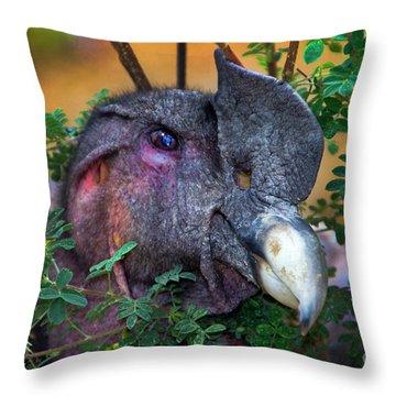 Andean Condor At Amaru II Throw Pillow