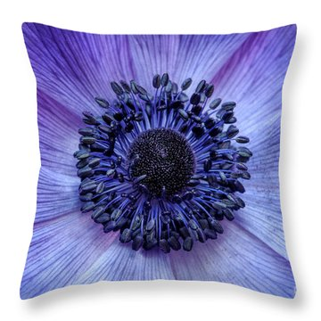 Throw Pillow featuring the photograph Anemone Blue by Tim Gainey