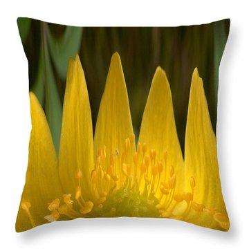 Anemone Flames Throw Pillow by Jouko Lehto