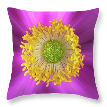 Anemone Hupehensis 'hadspen Throw Pillow by John Edwards