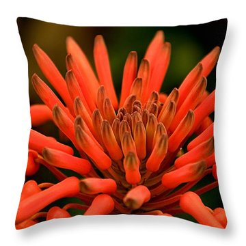 Throw Pillow featuring the photograph Anemone Or Peppers by Bob Wall