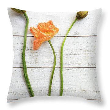 Throw Pillow featuring the photograph Anemone Pods by Rebecca Cozart