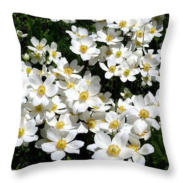 Throw Pillow featuring the photograph Anemone Profusion by Will Borden