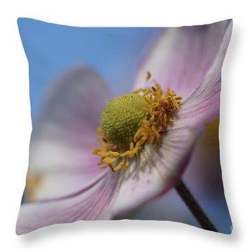 Anemone Tomentosa Close Up Throw Pillow