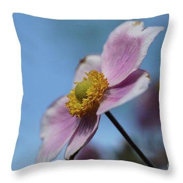 Anemone Tomentosa Flower Throw Pillow
