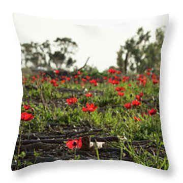 Anemones Forest Panorama Throw Pillow by Yoel Koskas