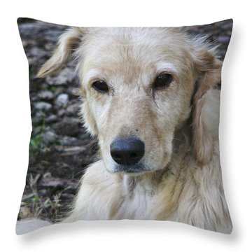 Angel A Rescue #2 Throw Pillow by Rhonda McDougall
