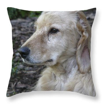 Angel A Rescue Throw Pillow by Rhonda McDougall