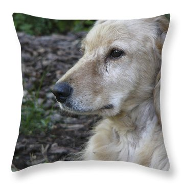Angel A Rescue Throw Pillow