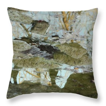 Angel Disguised As Coyote Throw Pillow
