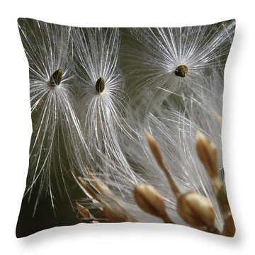 Throw Pillow featuring the photograph Angel Down by Rasma Bertz