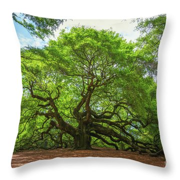 Throw Pillow featuring the photograph Angel Oak Tree In South Carolina  by Michael Ver Sprill