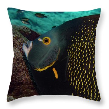 Throw Pillow featuring the photograph Angel Profile by Jean Noren