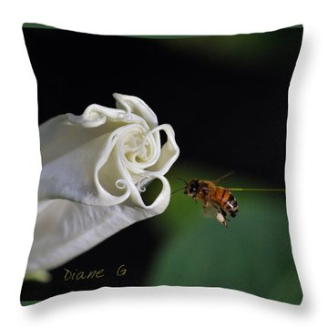 Angel Trumpet Throw Pillow by Diane Giurco