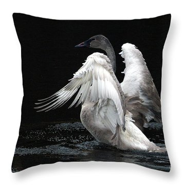 Angel Wings 2 Throw Pillow by Sharon Talson