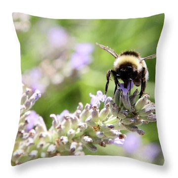 Throw Pillow featuring the photograph Angel Wings by Rasma Bertz