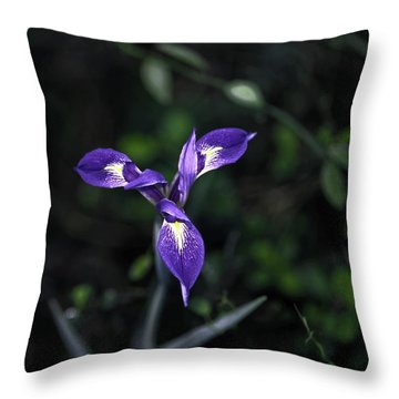 Angelpod Blue Flag Throw Pillow by Sally Weigand