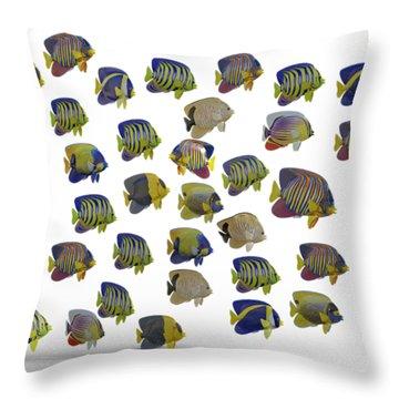 Schooling Fish Throw Pillows