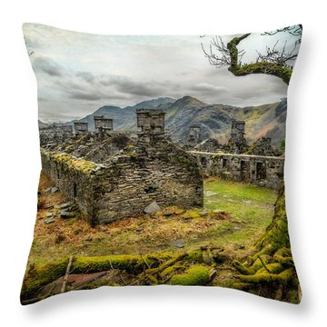 Anglesey Barracks Throw Pillow by Adrian Evans