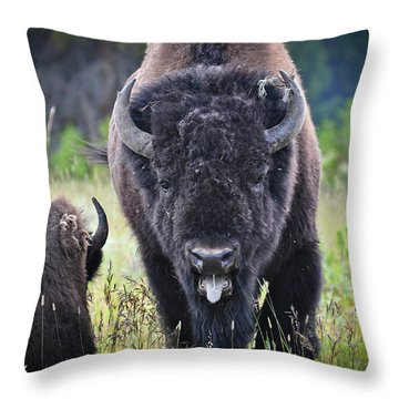 Angry Bison Throw Pillow by Greg Norrell