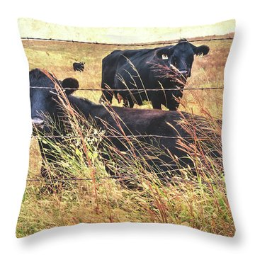 Throw Pillow featuring the photograph Angus Cows by Anna Louise