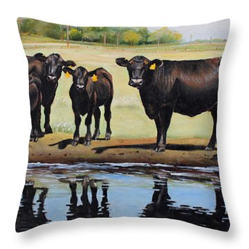 Angus Reflections Throw Pillow