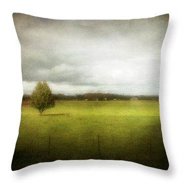 Angustown Pasture Throw Pillow by Cynthia Lassiter