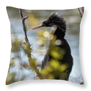 Anhinga 3 March 2018 Throw Pillow