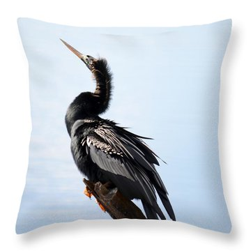 Anhinga Blues Throw Pillow by Kathy Gibbons