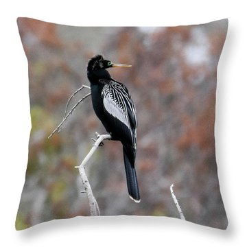 Throw Pillow featuring the photograph Anhinga by Gary Wightman