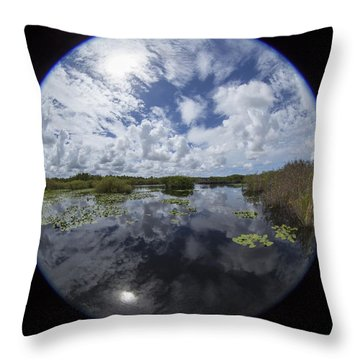Anhinga Trail 86 Throw Pillow