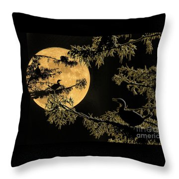 Throw Pillow featuring the photograph Anhingas In Full Moon by Bonnie Barry