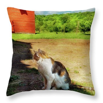 Animal - Cat - The Mouser Throw Pillow by Mike Savad