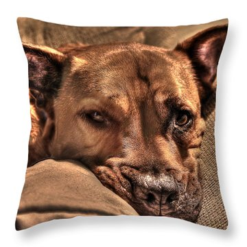 Animal 9 Throw Pillow