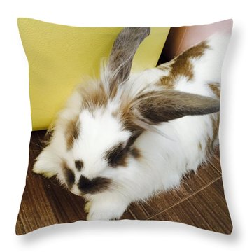 Animal Throw Pillow by Nao Yos