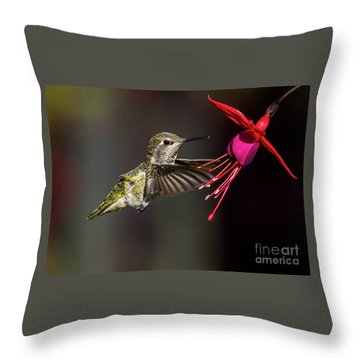 Anna Juvenile Hummingbird Throw Pillow