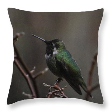 Anna Rainwings Throw Pillow