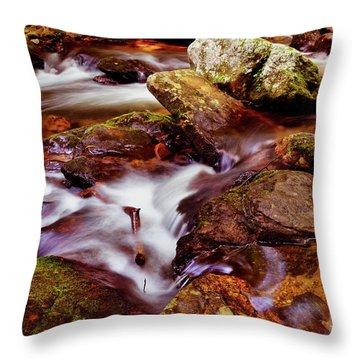Anna Ruby Falls - Smith Creek 006 Throw Pillow