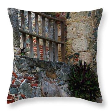 Annaberg Ruin Brickwork At U.s. Virgin Islands National Park Throw Pillow