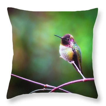 Anna's Hummingbird I Throw Pillow
