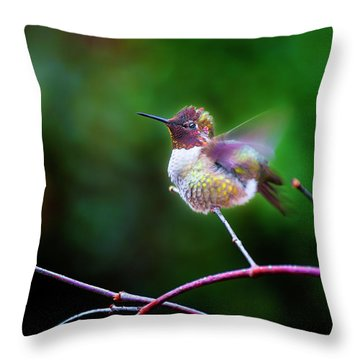Anna's Hummingbird IIi Throw Pillow
