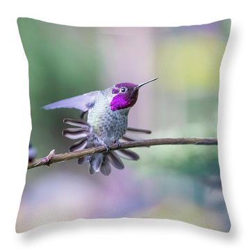 Anna's Hummingbird Stretching Throw Pillow