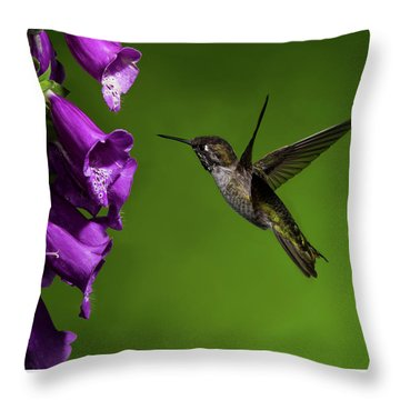 Throw Pillow featuring the photograph Anna's Hummingbird With Fox Glove Flowers by Lara Ellis