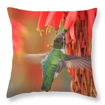 Annas Garden Throw Pillow