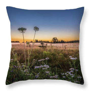 Throw Pillow featuring the photograph Anne's Lace On Misty Cavendish Meadows by Chris Bordeleau