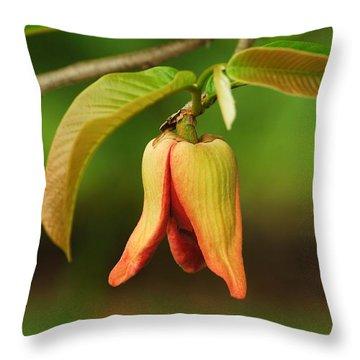 Annona Purpurea Flower Throw Pillow